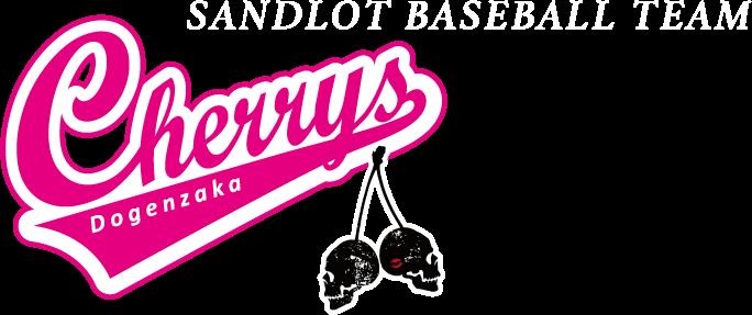 SANDLOT BASEBALL TEAM